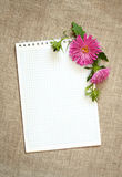Notepad and asters composition stock photos