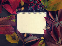 Notepad, autumn leaves Stock Image