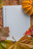 Notepad with autumn leaves and pumpkin Stock Photo