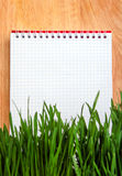 Notepad behind the Grass Royalty Free Stock Image