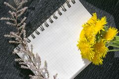 Notepad with binder and yellow dandelion flowers royalty free stock photos