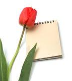notepad czerwieni tulipan Fotografia Stock