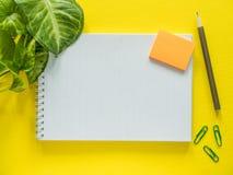 Notepad för anmärkningar, sidor för grön växt på det gula skrivbordet, lekmanna- lägenhet, kopieringsutrymme Royaltyfria Bilder