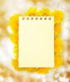 Notepad and flowers Royalty Free Stock Photo