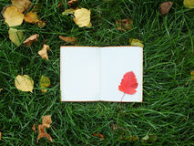 Notepad on green grass Stock Photo