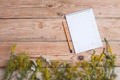Notepad i medycyny ziele na drewnianym stole Zdjęcia Stock