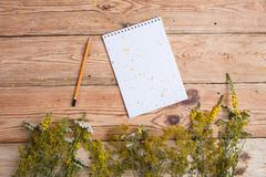Notepad i medycyny ziele na drewnianym stole - alternatywny medicin Obraz Royalty Free