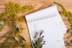 Notepad and medicine herbs on wooden table Stock Image