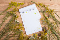 Notepad and medicine herbs on wooden table - alternative medicin Stock Photo