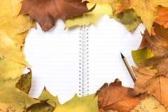 Notepad na żółtym liściu zdjęcie stock