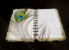 Notepad with a peacock feather Stock Image