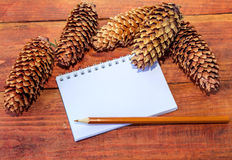 Notepad,  pencil and dry pine cones Royalty Free Stock Photography
