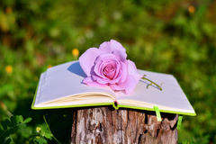 Notepad with rose on green  background Royalty Free Stock Photography
