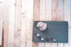 Notepad with seashells on a wooden background. royalty free stock photos