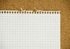 Notepad sheet Stock Image