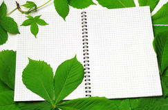 Notepad to record Royalty Free Stock Image