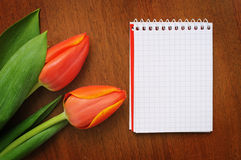 Notepad with tulips Royalty Free Stock Photo