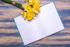 Notepad on a wooden board. Yellow daffodils flowers on a wooden table. Stock Images