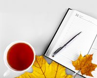 Notepad z piórem Obraz Stock