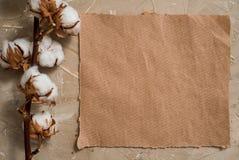 Notepaden är en anteckningsbok för tillträden Vykort för Kraft papper herbarium av torra blommor för bomullsgräs På en konkret br Royaltyfria Bilder