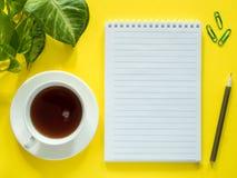 Notepaden för anmärkningar, gröna sidor planterar kaffekoppen på det gula skrivbordet, den lekmanna- lägenheten, kopieringsutrymm Royaltyfri Bild