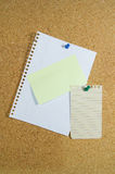 Notepaper on noticeboard Royalty Free Stock Photo