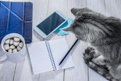 Notes d'écriture avec du café de matin Photographie stock