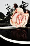 Notes d'amour et de musique Photos libres de droits