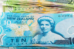Notes in New Zealand currency Stock Photography