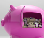 Notes In Piggy Shows Savings And Investment Royalty Free Stock Photo