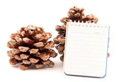 Notes pine cone left side Royalty Free Stock Images