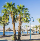 Nothern beach of Eilat, Israel Royalty Free Stock Photo