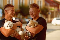 Nothing else but happiness. Happy family on walk. Muscular men with dog pets. Twins men hold pedigree dogs. Happy twins. With muscular look. Spitz dogs love the royalty free stock images