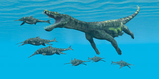 Nothosaurus atakuje Shonisaurus Obrazy Royalty Free