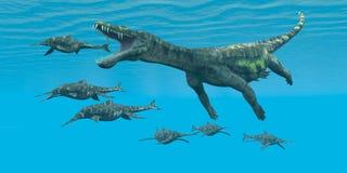 Nothosaurus攻击Shonisaurus 免版税库存图片