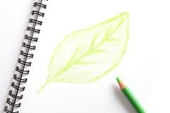Notitieboekje en groen potlood met groen blad Stock Afbeeldingen
