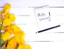 Notitieboekje met de inschrijvings hello lente Stock Fotografie