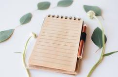 Notitieboekje met twijgen van eucalyptus royalty-vrije stock afbeelding