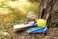 Notizbücher, Apfel, Saft, Buch, Bleistifte und Gläser unter einem Baum Stockbild