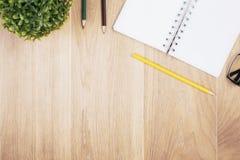 Notizblock, Bleistifte und Anlage Lizenzfreie Stockfotos