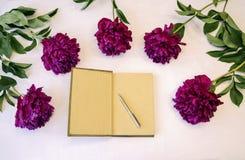 Notizblock mit Stift Lizenzfreie Stockbilder