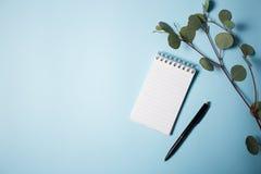 Notizblock mit Stift und Eukalyptus verzweigen sich auf einen blauen Hintergrund Stockfoto