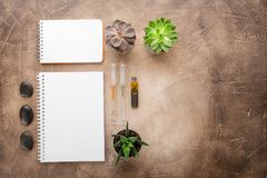 Notizblock und Succulents auf dem Tisch Das Geschäftskonzept Beschneidungspfad eingeschlossen Kopieren Sie Platz lizenzfreies stockbild