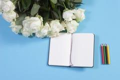 Notizbuch auf den Frühlingen mit einer weißen Rose auf einem blauen Hintergrund mit einem leeren Raum für Anmerkungen Lizenzfreies Stockbild