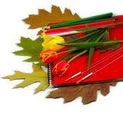 Notizbuch-, Blumen-, Blatt- und Bleistiftisolat Stockbild