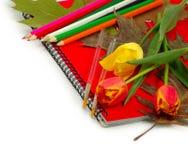 Notizbuch-, Blumen-, Blatt- und Bleistiftisolat Stockfotografie