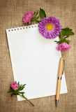 Notizbuch mit Stift und Astern lizenzfreies stockfoto