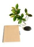 Notizbuch und Blätter Lizenzfreies Stockfoto
