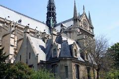 Notre Damae zdjęcie royalty free