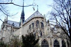 Notre Damae Katedra Obraz Stock